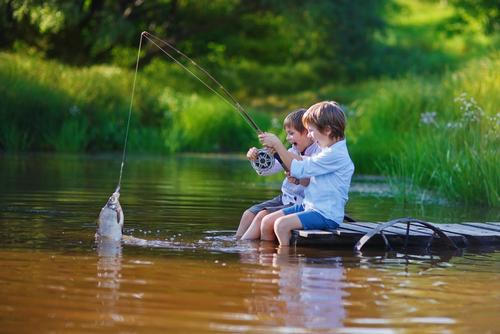 タニシ 鯉 釣り